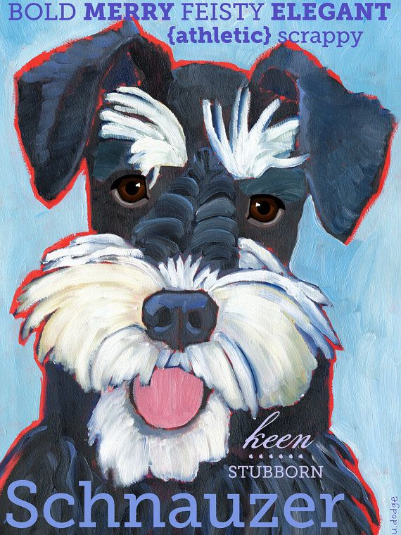 Schnauzer No. 2 magnets coasters and art prints by ursuladodge