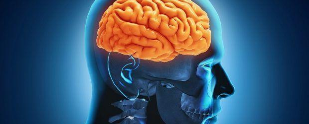 Creierul are capacitatea de a șterge gândurile nefolositoare sau toxice, mărindu-și astfel capacitatea pentru noi informații