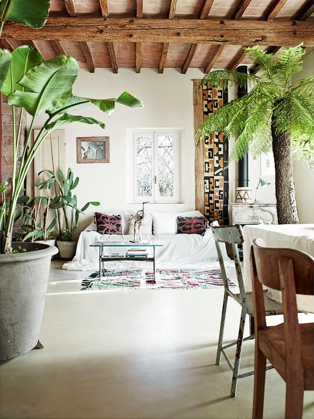 A Rustic Farmhouse Abounds With Greenery Tropical style