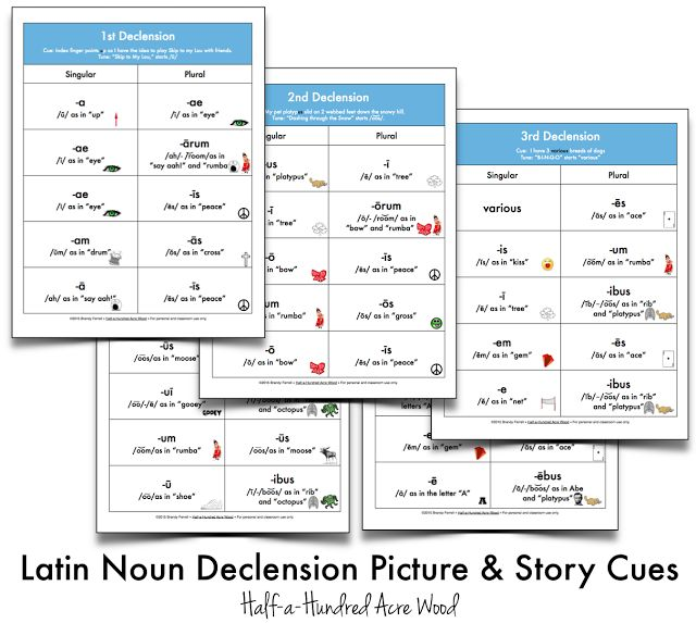 Half-a-Hundred Acre Wood: Latin Noun Declension File Folder Games & Cues {Printables}