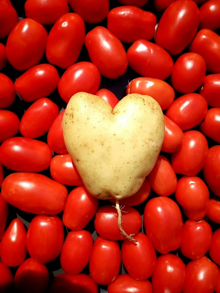 Food for love.