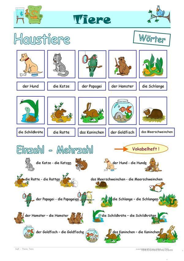 20 Arbeitsblatter Haustiere Haustiere Tiere Daf Arbeitsblatter