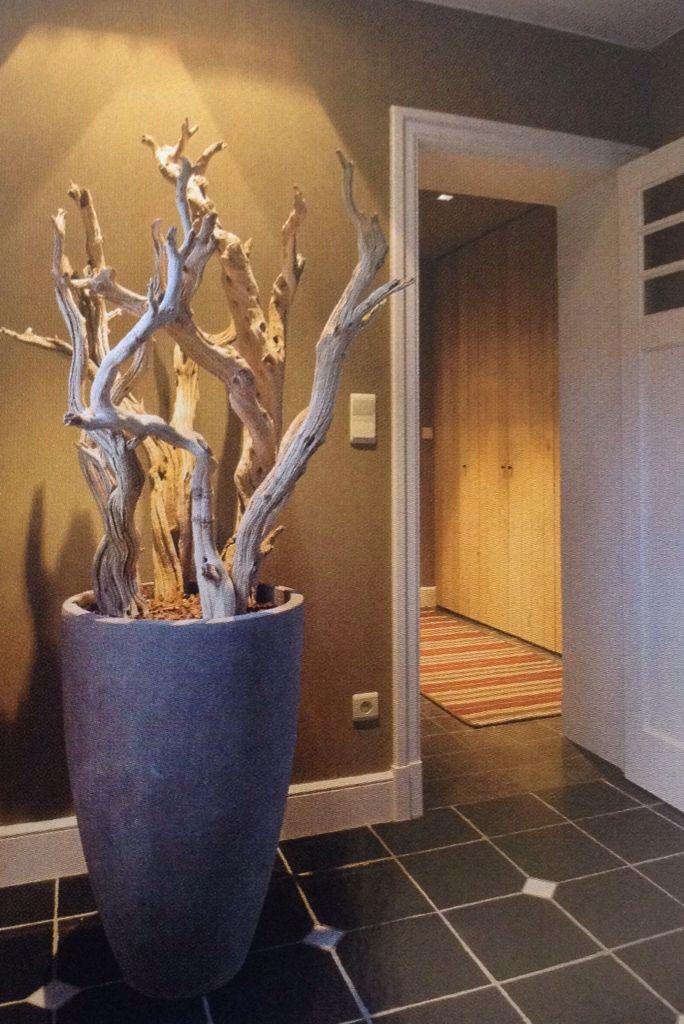 17 beste afbeeldingen over landelijke entree op pinterest grijze gang voordeuren en entree - Decoratie entree van hal ...