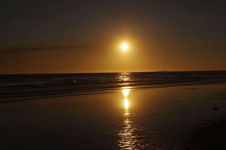 En el norte chico de Chile tenemos diferentes tipos de lugares para disfrutar, poder pasear y conocer, estar más cerca de la naturaleza y poder sacar lo mejor de lo que nos ofrece la naturaleza. En el siguiente listado encontrarás 6 excelentes playas para salir de vacaciones, practicar surf, ...