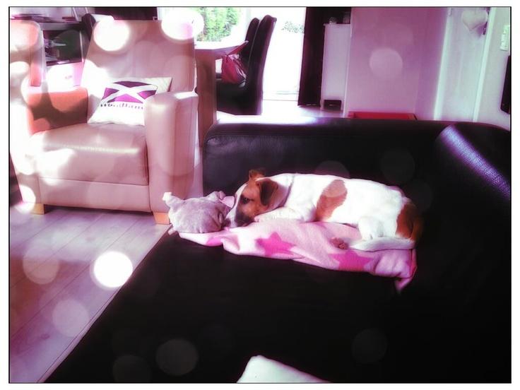 Isa relaxing