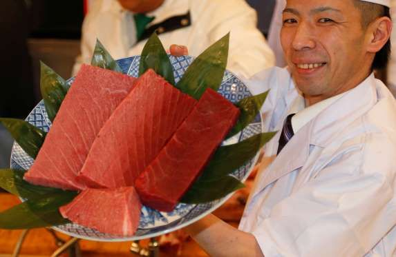 Most expensive tuna fish food pinterest the world for Most expensive fish in the world