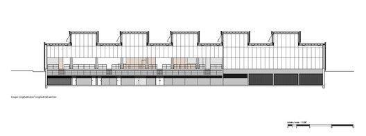 Hacine Cherifi Gymnasium,Longitudinal Section