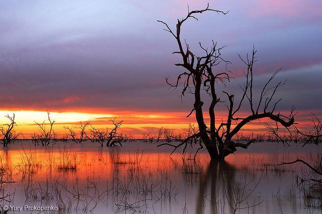 Lake Menindee, NSW, Australia