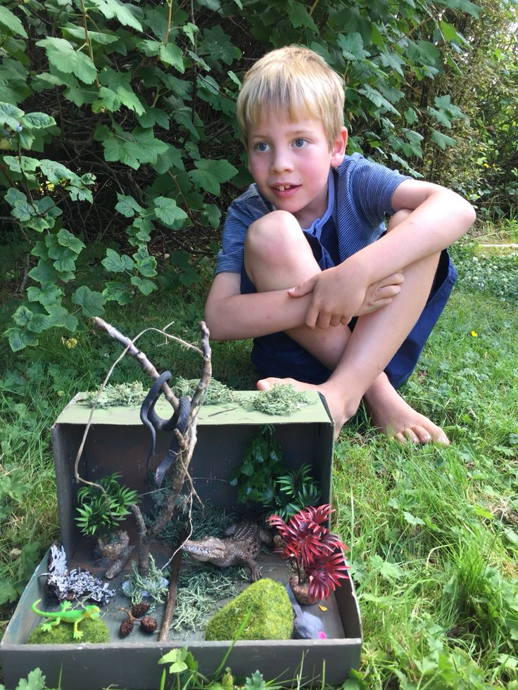 Henry with his swamp diorama