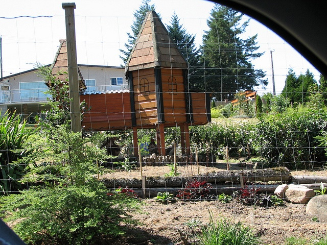 the Camelot of Chicken Coops - Victoria BC