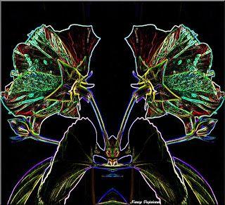 Nancy Foto Blog: Neon