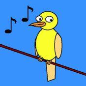 Lär dig olika fåglars sång och kvitter