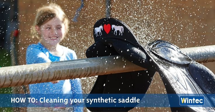 Isn't it time you spruced up your synthetic saddle? Make your saddle look new in just six easy steps. Learn how to clean your synthetic saddle.