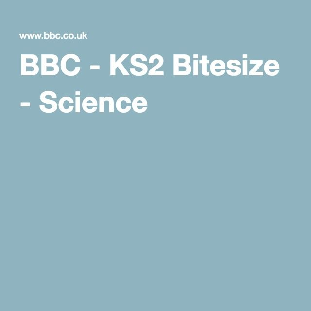 Bbc homework ks2 islam: Essay 24 writing services