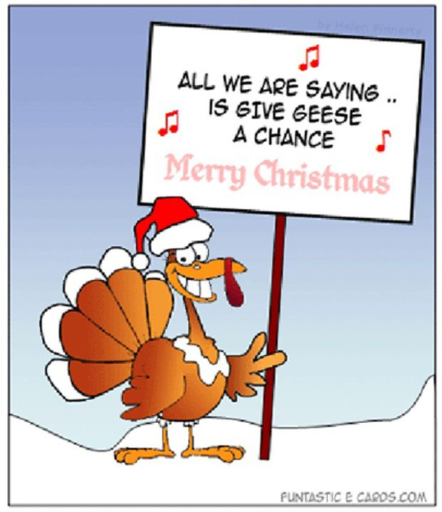 I prefer ham, myself. funny+christmas+pictures+|+funny+christmas+pictures,+funny+christmas+turkey