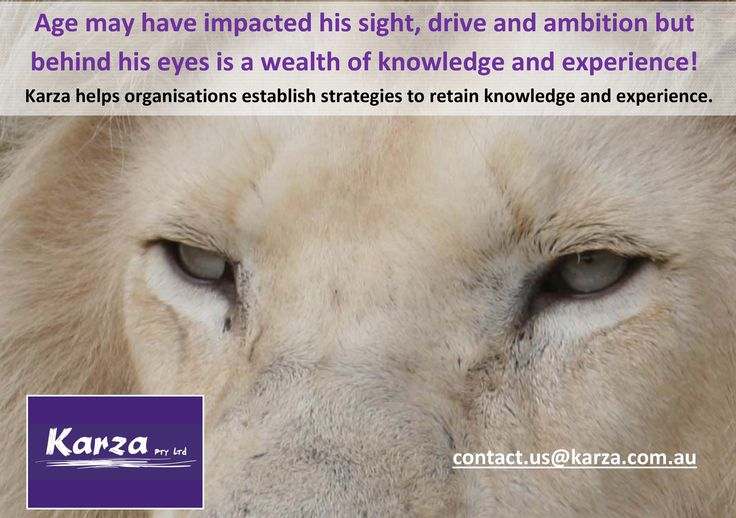 Age may have impacted his sight, drive and ambition but behind his eyes is a wealth of knowledge and experience!