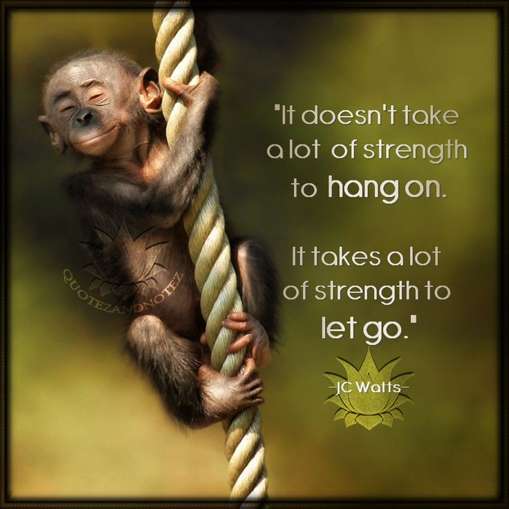 Hanging On Can You Hang Pinterest