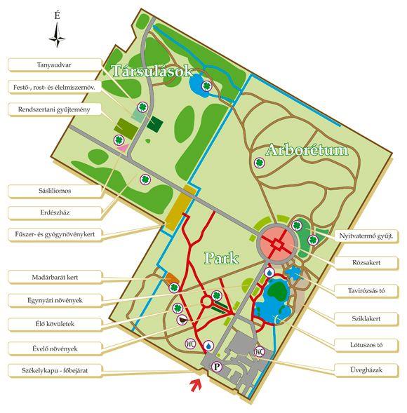 Szegedi füvészkert (Szeged) http://www.turabazis.hu/latnivalok_ismerteto_4561 #latnivalo #szeged #turabazis #hungary #magyarorszag #travel #tura #turista #kirandulas