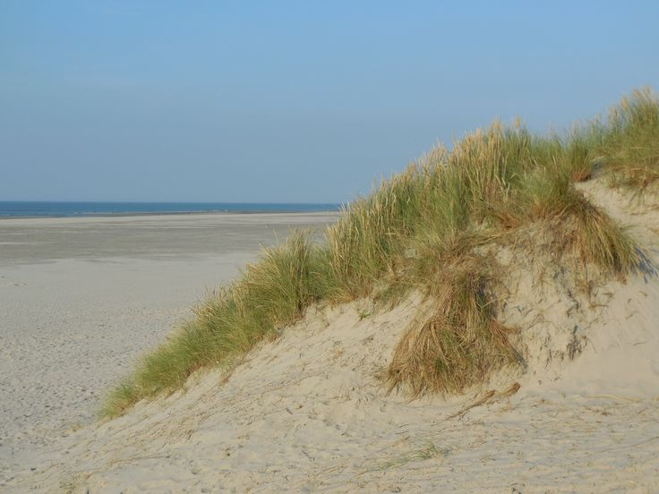 Terschelling Strand Duinen