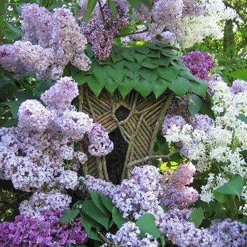 Reminds me of my grandmother..Fairies Doors, Canvas Prints, Greenspirit Art, Fairies Gardens, Fairies House, Landscapes Gardens, Fairies Parties, Faeries House, Lilac House Jpg