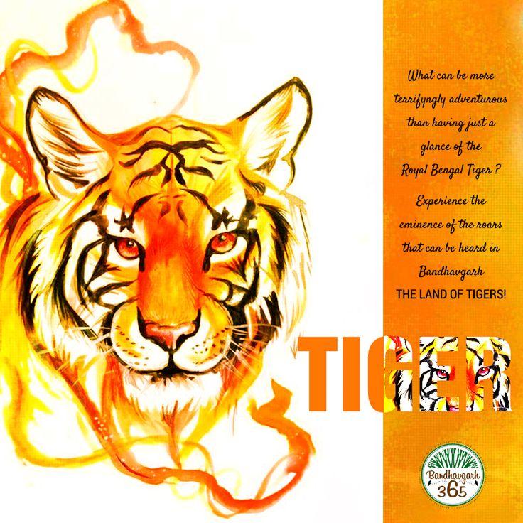 Give Yourself a thrill. Meet the rumble of Royal Bengal Tigers at Bandhavgarh National Park. Book: http://www.bandhavgarh365.com/ #JungleSafari #WildlifeSafari #BandhavgarhJungleSafari #BandhavgarhNationalPark