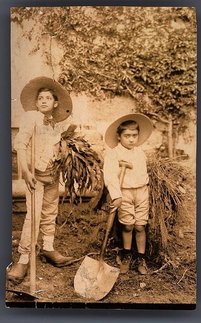 Amadeo de Souza Cardoso e António de Souza Cardoso, Portugal