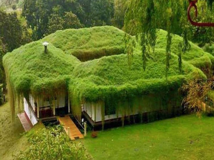 What are your thoughts on this Scandinavian grass-house?  Make sure your lawns and surrounding grass areas are well maintained to keep your property at its best and safe from any 'Hobbit' jokes.