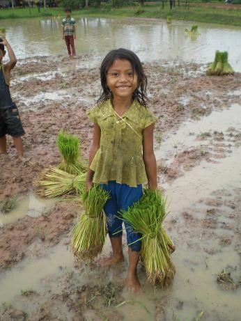Um lindo sorriso do Camboja. E ela está trabalhando nos campos, com os pezinhos na lama, e molhada pela chuva.