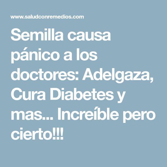 Semilla causa pánico a los doctores: Adelgaza, Cura Diabetes y mas... Increíble pero cierto!!!