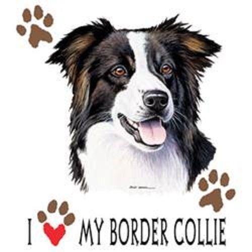 Love My Border Collie Dog HEAT PRESS TRANSFER for T Shirt Sweatshirt Fabric 814b #AB