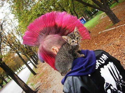 Baby, I love you. | 23 Pictures That Prove Punks Are Actually Total Softies