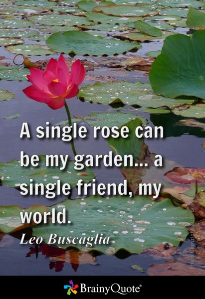A single rose can be my garden... a single friend, my world. - Leo Buscaglia