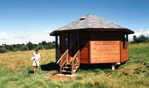 17 best images about octagon cabins on pinterest for Octagonal log cabin plans
