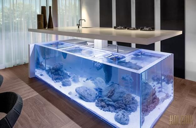 contemporary kitchen island with built in aquarium with rising top