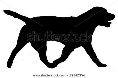 Walking Labrador Silhouette   Black Lab Silhouette Clip Art