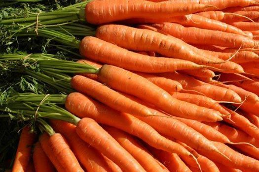 """""""If you suffer from arthritis or achy joints, incorporate more carrots into your diet to decrease inflammation. Vitamin A and beta carotene found in carrots and other orange hued vegetables is believed to fight inflammation thereby decreasing joint pain and stiffness. Get the most out of your carrots by cooking them to make both compounds more available.""""  -MOVESTRONG, DeClaire Medicine for Movement"""
