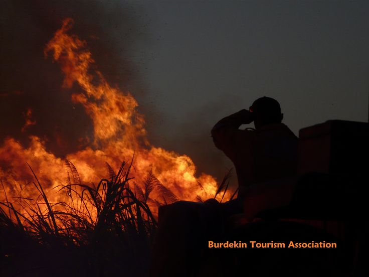 Add this to your bucket list... View a cane fire, Burdekin Shire, North Queensland.