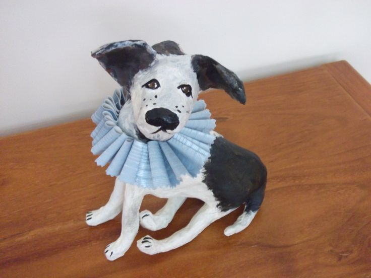 A little dog with his ruffled collar