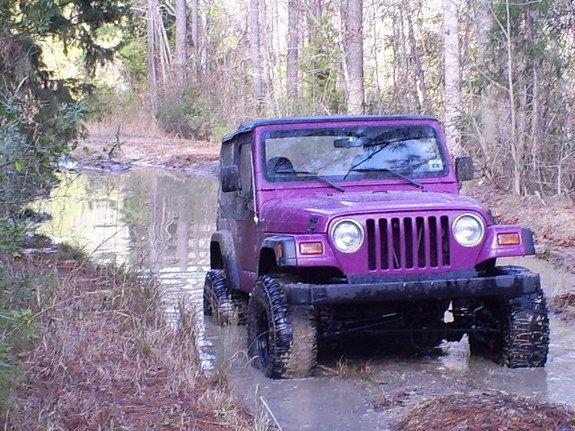 1997 Jeep Wrangler Purple Color | Gambit48 1997 Jeep Wrangler 10950511