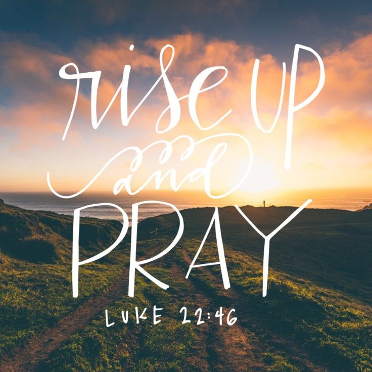 Rise And Pray Lest You Enter Into Temptation Luke Creator God We Rejoice Give Thanks For The Wonder Of Your Creation Awakened Afresh To