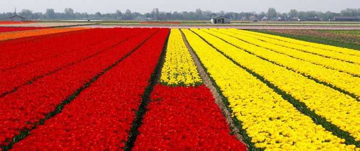 The entire place is just TOO flat. | 42 Reasons The Netherlands Is The Worst Place On Earth