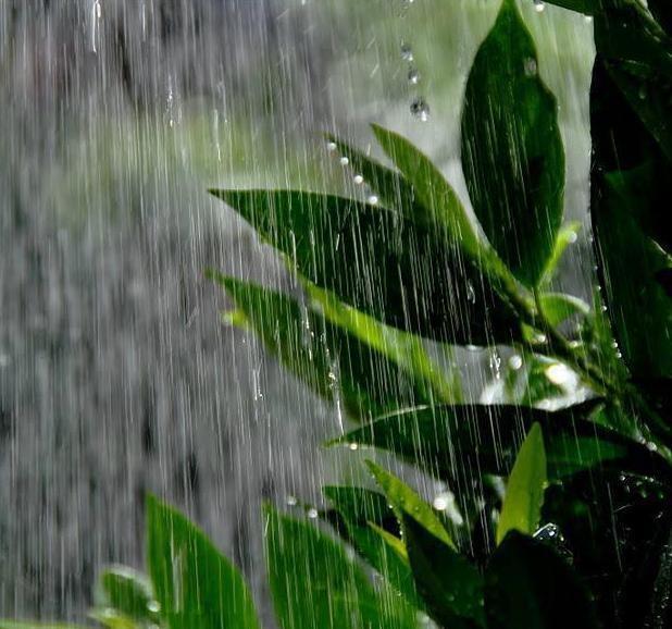 I Love Rainy Days: Pin By Becky On I Love Rainy Days