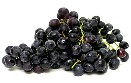 Seedless Black Grapes - I live for these each year!  They are the best grape grown.  Sweet, juicy...mouthwatering!