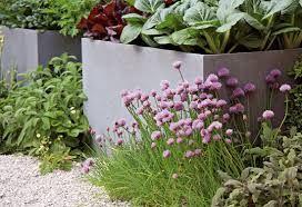Výsledek obrázku pro vyvýšená zeleninová zahrada