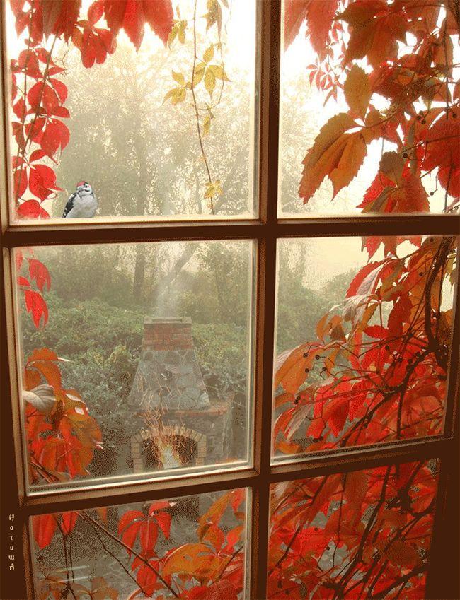 канкун картинки осень за окном они подчеркнут