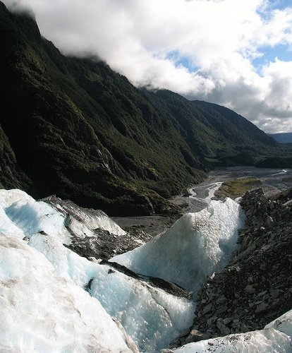 Franz Josef glacier, West Coast, South Island