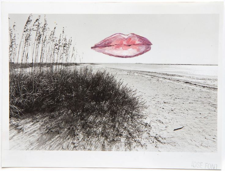 Shannon Bool - The Lips(2013)