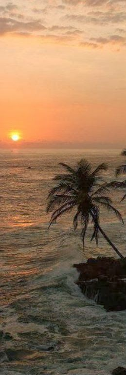 Island Sunset.. love images like these; I can almost hear the ocean waves crashing ashore <3