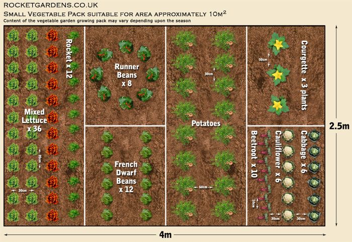 Perfect layout for a small vegetable garden, or a plot in a community garden.