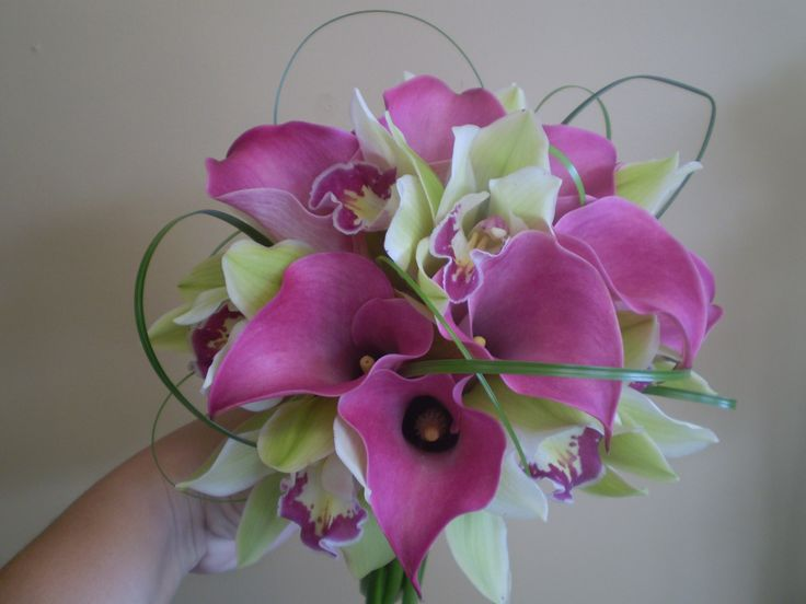 Catie's bouquet of Lime Cymbidium Orchids and Fushia Calla Lillies. Designed by Olive Lane
